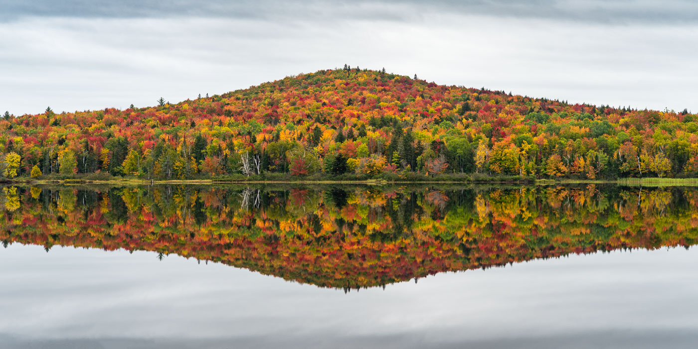 How to Photograph Stunning Fall Colors: A Complete Guide