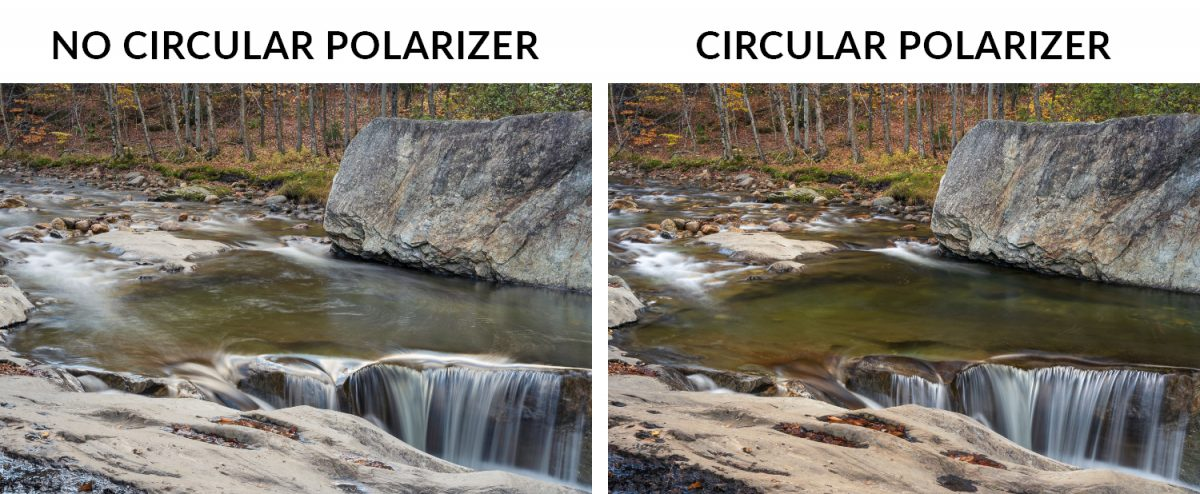 two images with and without a circular polarizer